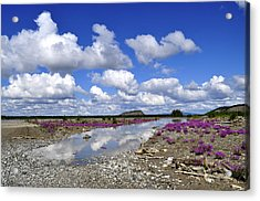 Acrylic Print featuring the photograph Delta Junction Summer by Cathy Mahnke