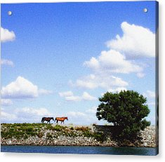 Delta Range Acrylic Print by Ari Jacobs