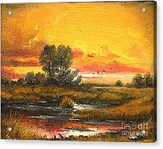 Delta Sunset Acrylic Print by Sorin Apostolescu