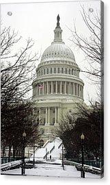 Democracy Of One Acrylic Print