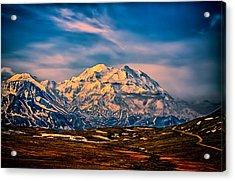 Denali At Sunset Acrylic Print