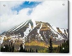 Denali Mountain Acrylic Print
