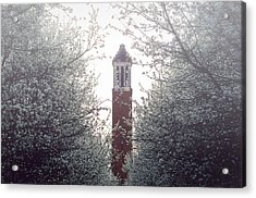 Acrylic Print featuring the photograph Denny Chimes Foggy Blossoms by Ben Shields