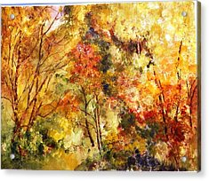 Dense Wood Acrylic Print