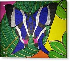 Descansando Acrylic Print by Marcia Brownridge