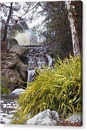 Descanso Gardens 1 Acrylic Print
