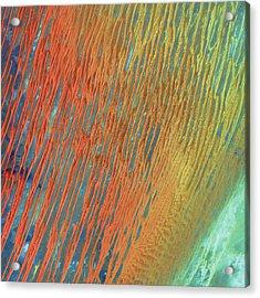 Desert Abstract Acrylic Print by Jennifer Rondinelli Reilly - Fine Art Photography