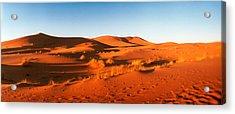 Desert At Sunrise, Sahara Desert Acrylic Print by Panoramic Images