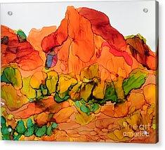Desert Beauty 6 Acrylic Print