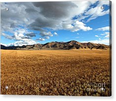 Desert Bliss Acrylic Print by Kimberly Maiden