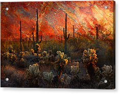 Acrylic Print featuring the photograph Desert Burn by Barbara Manis