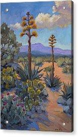 Desert Century Plants Acrylic Print by Diane McClary