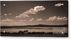 Desert Clouds Acrylic Print by Gregory Dyer
