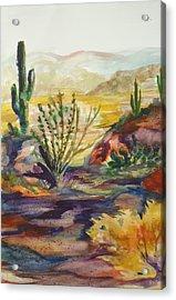 Desert Color Acrylic Print