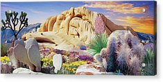 Desert Colors  Acrylic Print by Snake Jagger