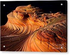 Desert Delight Acrylic Print
