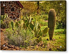 Acrylic Print featuring the photograph Desert Dream by Mark Myhaver