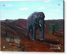 Desert Elephant Acrylic Print
