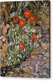 Desert Flowers Acrylic Print by Mukta Gupta