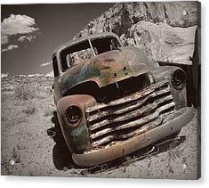 Desert Gem.. Acrylic Print