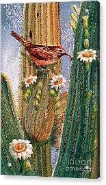 Desert Gems Acrylic Print