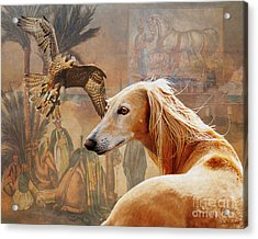 Desert Heritage Acrylic Print by Judy Wood