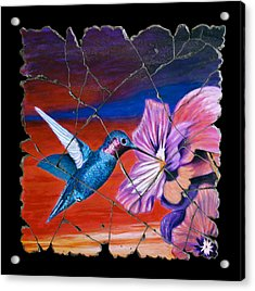 Desert Hummingbird Acrylic Print by Steve Bogdanoff