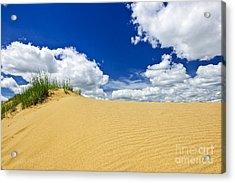 Desert Landscape In Manitoba Acrylic Print