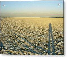 Acrylic Print featuring the photograph Desert Like by David Nicholls