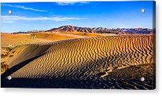 Desert Lines Acrylic Print