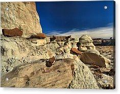 Desert Litter Acrylic Print by Adam Jewell
