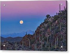 Desert Moonset Acrylic Print