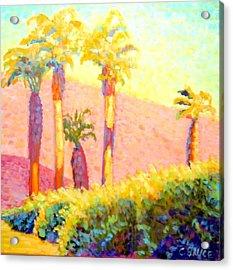Desert Morning Palms Acrylic Print by Craig  Bruce