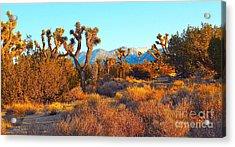Desert Mountain Acrylic Print by Gem S Visionary
