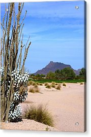 Acrylic Print featuring the photograph Desert Mountain by Mike Ste Marie