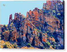 Desert Paint Acrylic Print