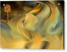 Desert Palm In Sandstorm Acrylic Print