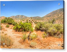 Desert Panorama Acrylic Print by Deborah Smolinske
