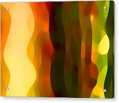 Desert Pattern 1 Acrylic Print by Amy Vangsgard