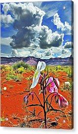 Desert Primrose 3 Acrylic Print