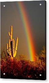 Desert Rainbow Acrylic Print by T C Brown