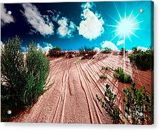 Desert Rays Acrylic Print