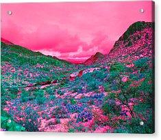 Desert Red Acrylic Print by Joseph Wiegand