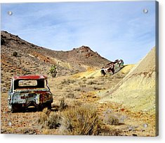 Acrylic Print featuring the photograph Desert Relics by Marilyn Diaz