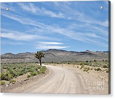 Acrylic Print featuring the photograph Desert Road by Marilyn Diaz
