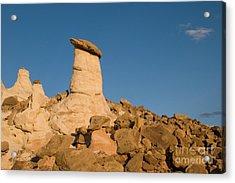 Desert Rock Garden Acrylic Print