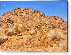 Desert Rocks Acrylic Print by Deborah Smolinske