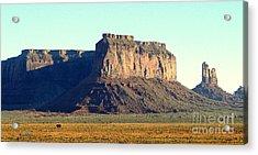 Desert Scene Usa Acrylic Print by John Potts