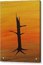 Desert Sentinal Acrylic Print by Keith Nichols