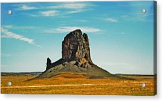 Acrylic Print featuring the photograph Desert Sentinel by Sylvia Thornton